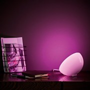 Philips hue Go Personal Wireless Lighting LED Table Lamp